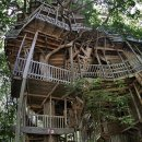 giant-handmade-tree-house.jpg